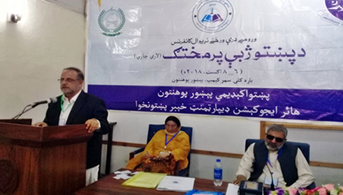 Director presides over session of 1st International Conference on Promotion of Pashto Language